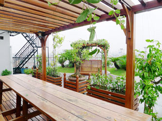 2 br apartment for rent in Dong Da, Nice sharing Rooftop Terrace Garden