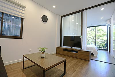 Affordable and modern design 01 bed apartment on Trinh Cong Son Road