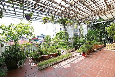 Old but Gold 01 bedroom apartment on To Ngoc Van Road, brick wall and garden terrace