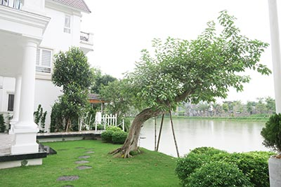Vinhomes Riverside: Elegant and spacious 04BRs villa in Anh Dao, river access