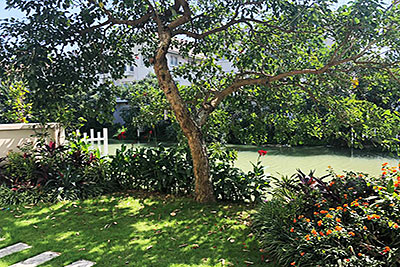 Vinhomes Riverside: Peaceful 03+1BRs villa with river access in Hoa Sua